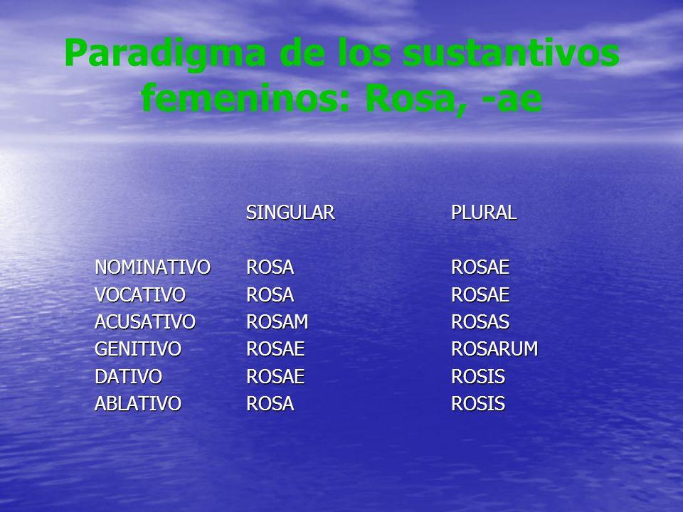 Paradigma de los sustantivos femeninos: Rosa, -ae SINGULARPLURAL NOMINATIVOROSAROSAE VOCATIVOROSAROSAE ACUSATIVOROSAMROSAS GENITIVOROSAEROSARUM DATIVO
