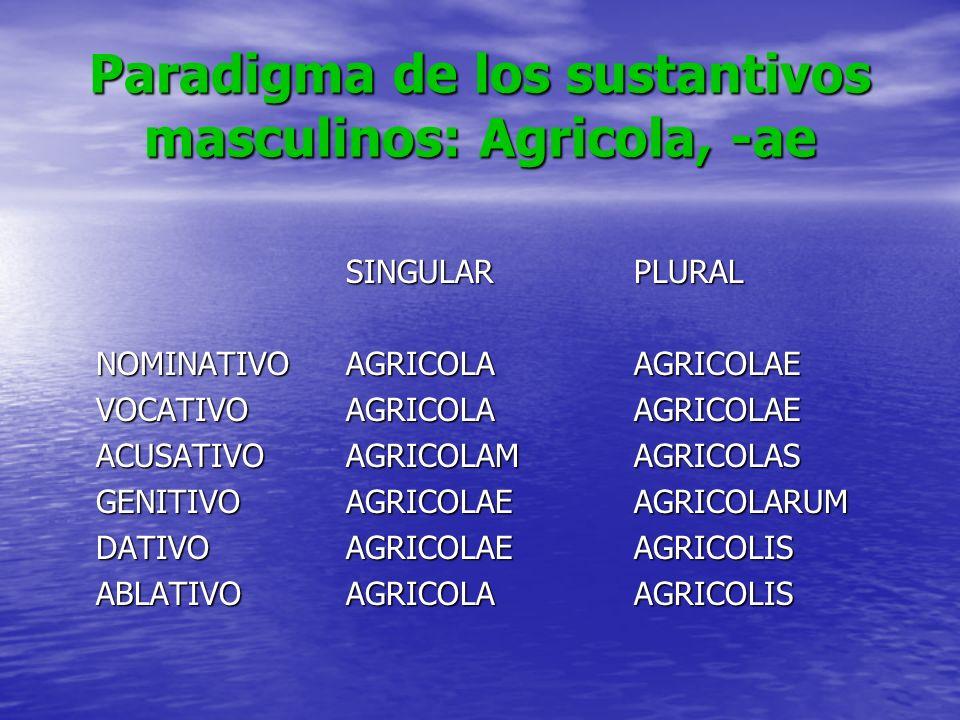 Paradigma de los sustantivos masculinos: Agricola, -ae SINGULARPLURAL NOMINATIVOAGRICOLAAGRICOLAE VOCATIVOAGRICOLAAGRICOLAE ACUSATIVOAGRICOLAMAGRICOLA