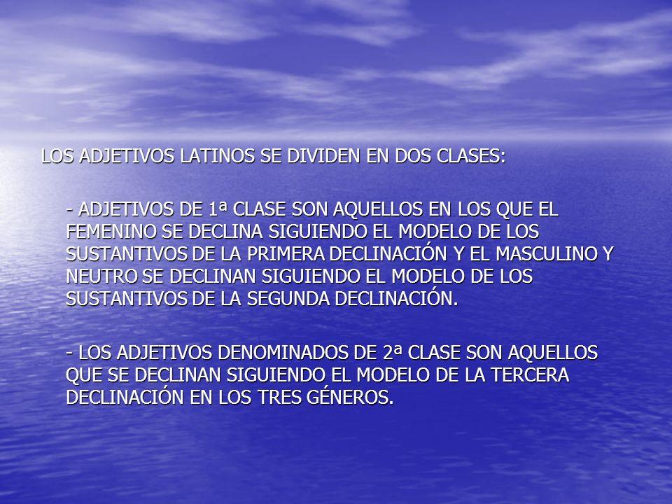 EXISTEN TRES MODELOS DISTINTOS DENTRO DE LOS ADJETIVOS DE 1ª CLASE: EL TIPO BONUS, BONA, BONUM ES EL MÁS FRECUENTE Y NO OFRECE NINGUNA COMPLICACIÓN EN SU DECLINACIÓN CON RESPECTO A LOS SUSTANTIVOS.