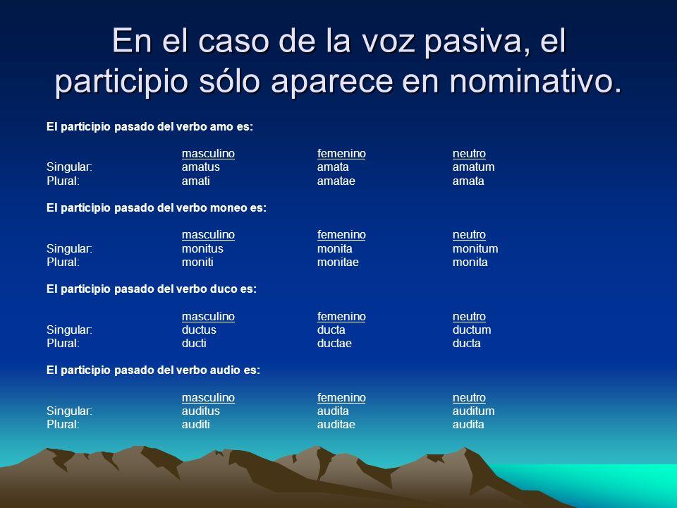 En el caso de la voz pasiva, el participio sólo aparece en nominativo. El participio pasado del verbo amo es: masculinofemeninoneutro Singular:amatusa