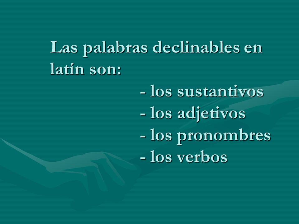 Las palabras declinables en latín son: - los sustantivos - los adjetivos - los pronombres - los verbos