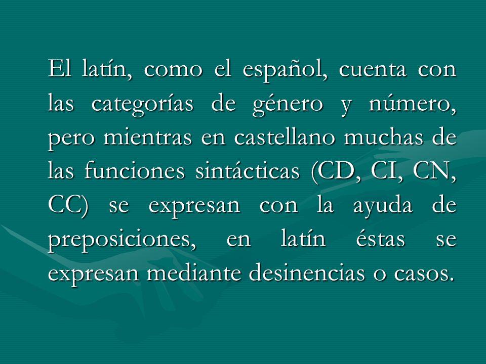 El latín, como el español, cuenta con las categorías de género y número, pero mientras en castellano muchas de las funciones sintácticas (CD, CI, CN,