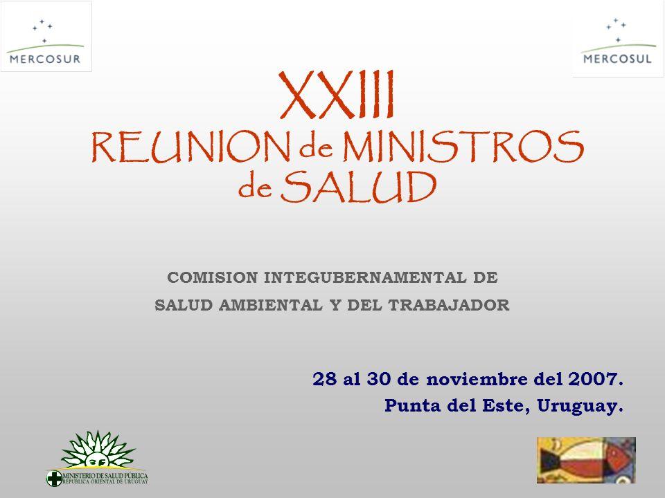 COMISION INTERGUBERNAMENTAL DE SALUD AMBIENTAL Y DEL TRABAJADOR CISAT ANTECEDENTES 2004.