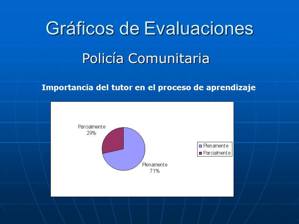 Gráficos de Evaluaciones Policía Comunitaria Importancia del tutor en el proceso de aprendizaje