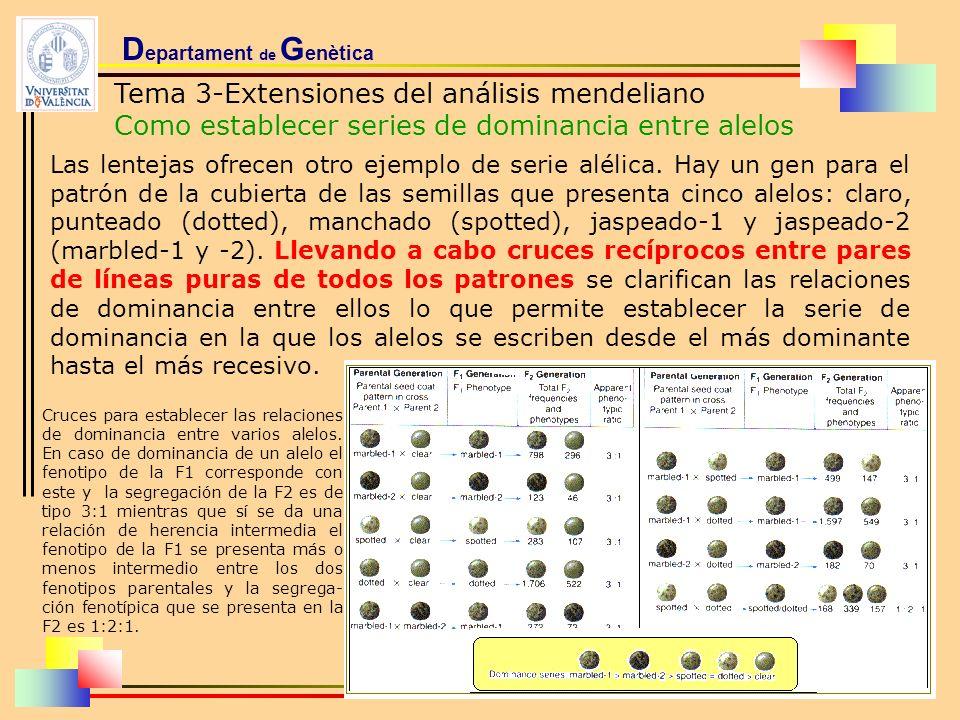D epartament de G enètica Tema 3-Extensiones del análisis mendeliano Como establecer series de dominancia entre alelos Las lentejas ofrecen otro ejemp