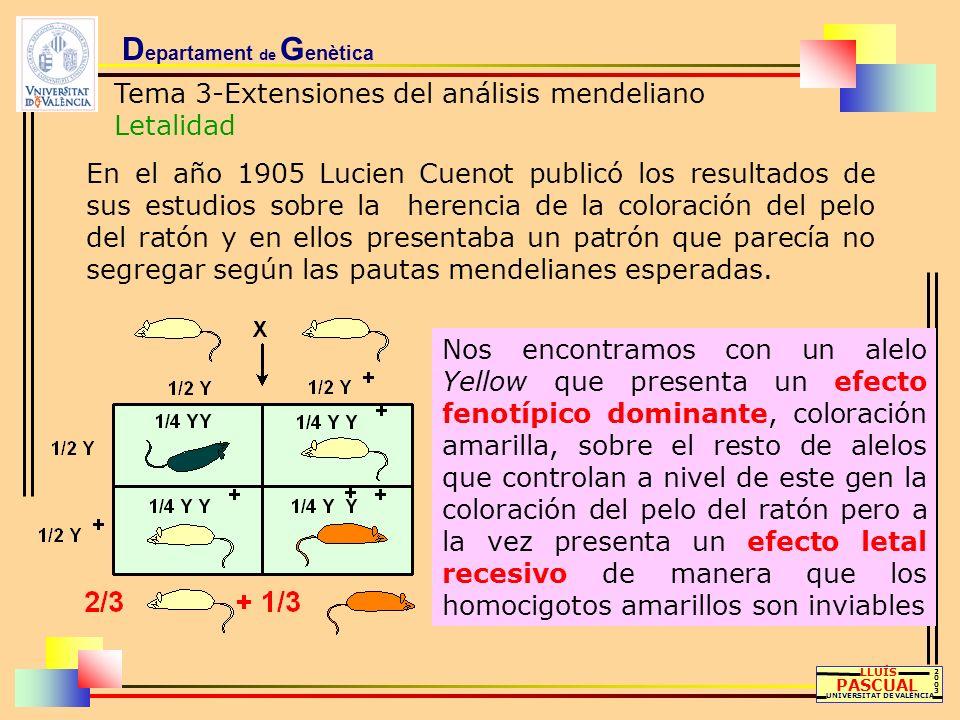 D epartament de G enètica Tema 3-Extensiones del análisis mendeliano Letalidad LLUÍS PASCUAL UNIVERSITAT DE VALÈNCIA 20032003 En el año 1905 Lucien Cu