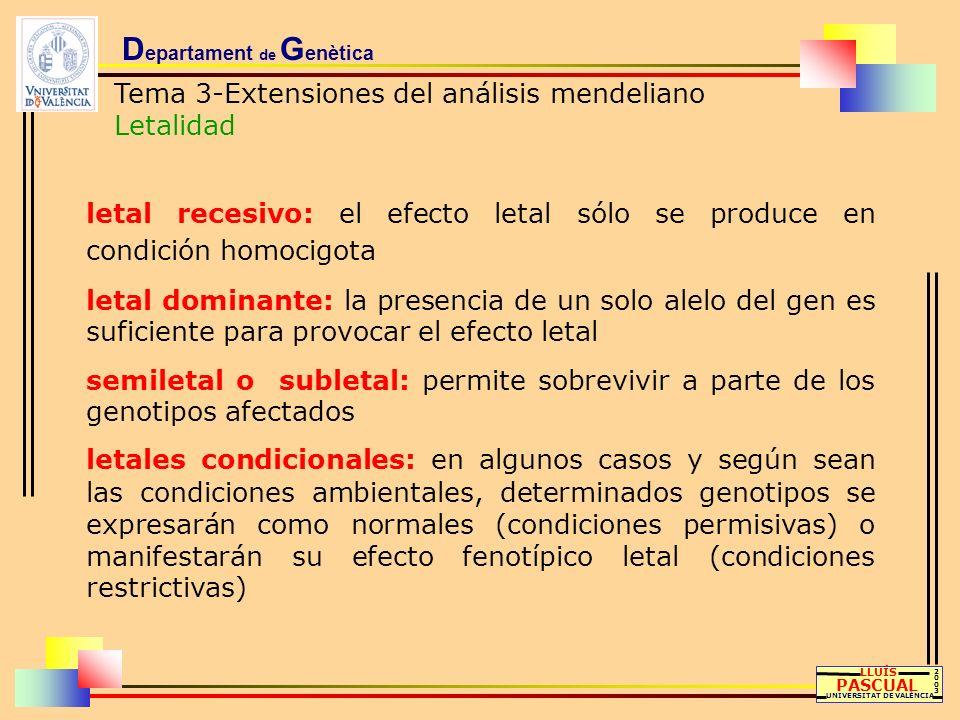 D epartament de G enètica Tema 3-Extensiones del análisis mendeliano Letalidad LLUÍS PASCUAL UNIVERSITAT DE VALÈNCIA 20032003 letal recesivo: el efect