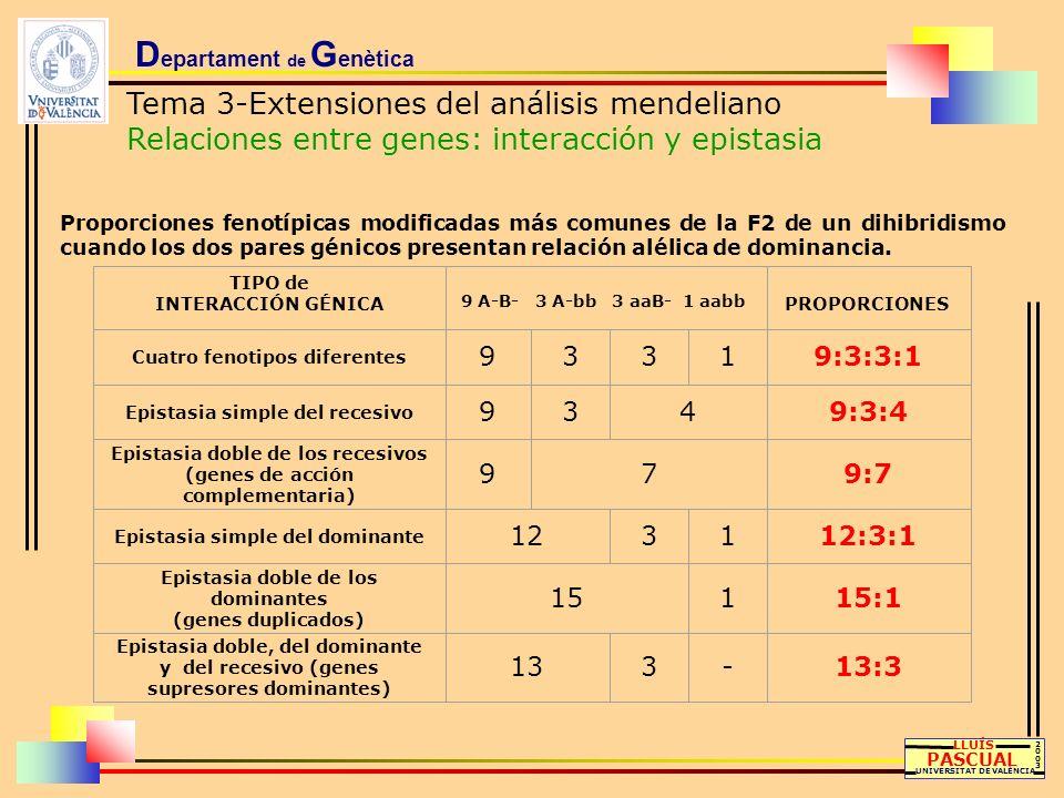D epartament de G enètica Tema 3-Extensiones del análisis mendeliano Relaciones entre genes: interacción y epistasia LLUÍS PASCUAL UNIVERSITAT DE VALÈ