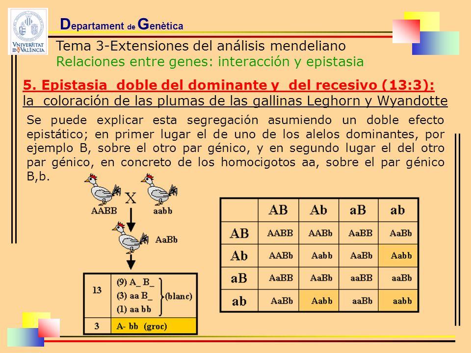 D epartament de G enètica Tema 3-Extensiones del análisis mendeliano Relaciones entre genes: interacción y epistasia 5. Epistasia doble del dominante
