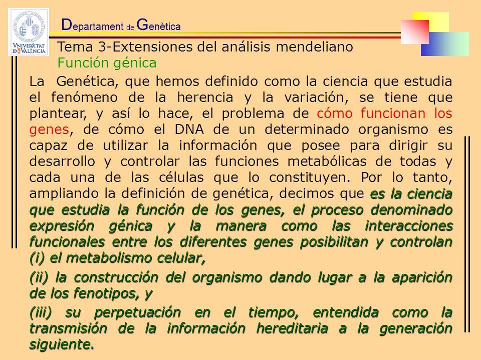 D epartament de G enètica Tema 3-Extensiones del análisis mendeliano Función génica es la ciencia que estudia la función de los genes, el proceso deno