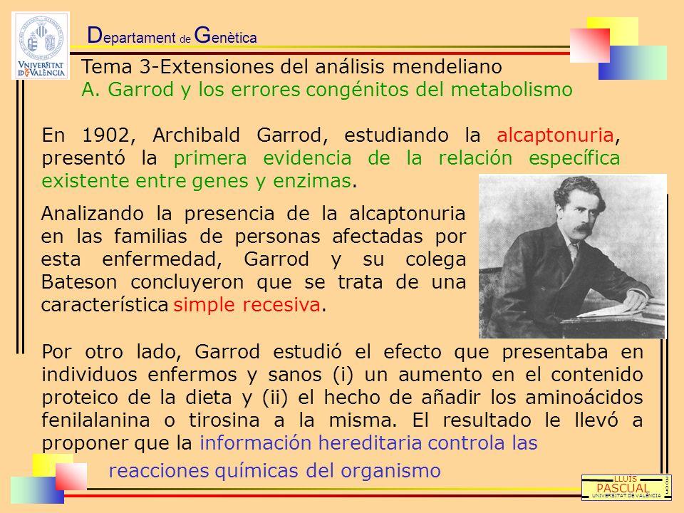 D epartament de G enètica Tema 3-Extensiones del análisis mendeliano A. Garrod y los errores congénitos del metabolismo LLUÍS PASCUAL UNIVERSITAT DE V