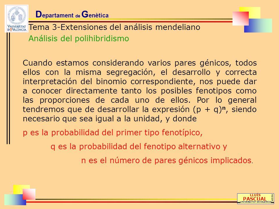 D epartament de G enètica Tema 3-Extensiones del análisis mendeliano Análisis del polihibridismo LLUÍS PASCUAL UNIVERSITAT DE VALÈNCIA 20032003 Cuando