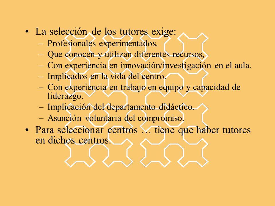 La selección de los tutores exige: –Profesionales experimentados. –Que conocen y utilizan diferentes recursos, –Con experiencia en innovación/investig