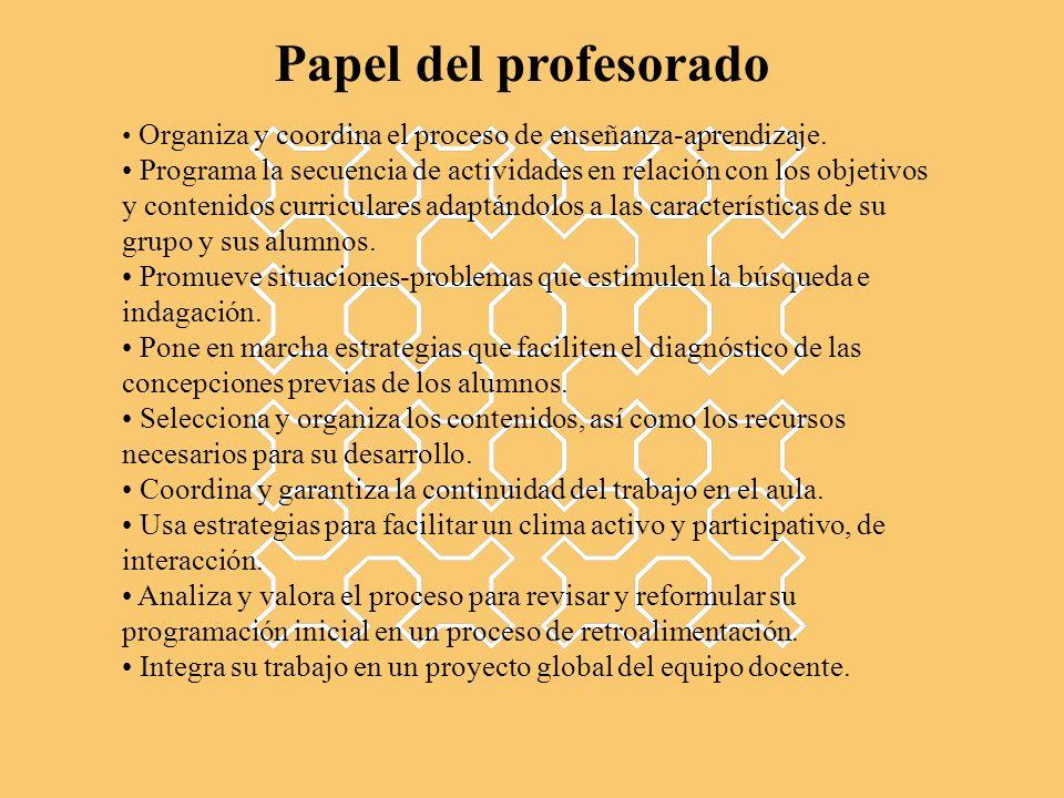 Organiza y coordina el proceso de enseñanza-aprendizaje. Programa la secuencia de actividades en relación con los objetivos y contenidos curriculares