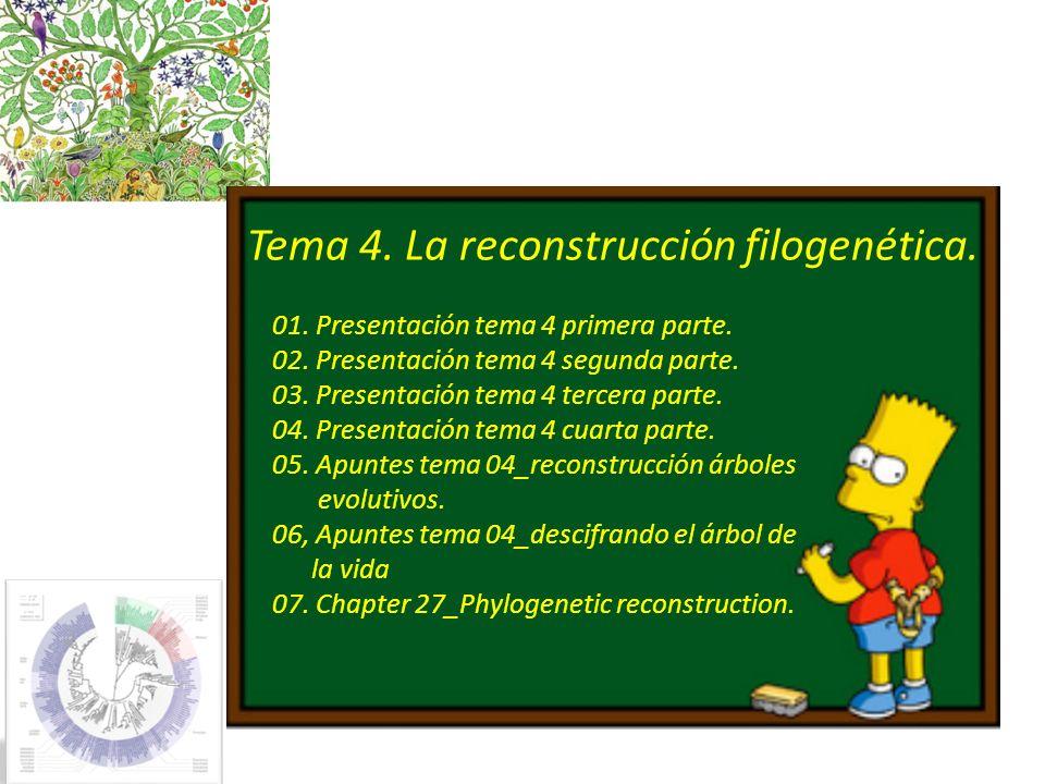 Present Temps Ancestre comú més recent (MRCA) TCAAGGTATTAAC 316/01/2014 Fernando González Candelas 4.7.