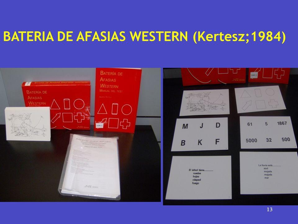 13 BATERIA DE AFASIAS WESTERN (Kertesz;1984)
