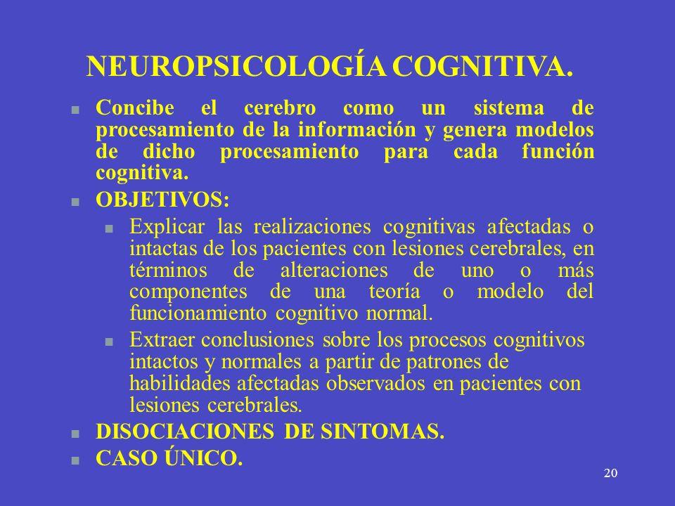 20 NEUROPSICOLOGÍA COGNITIVA. Concibe el cerebro como un sistema de procesamiento de la información y genera modelos de dicho procesamiento para cada