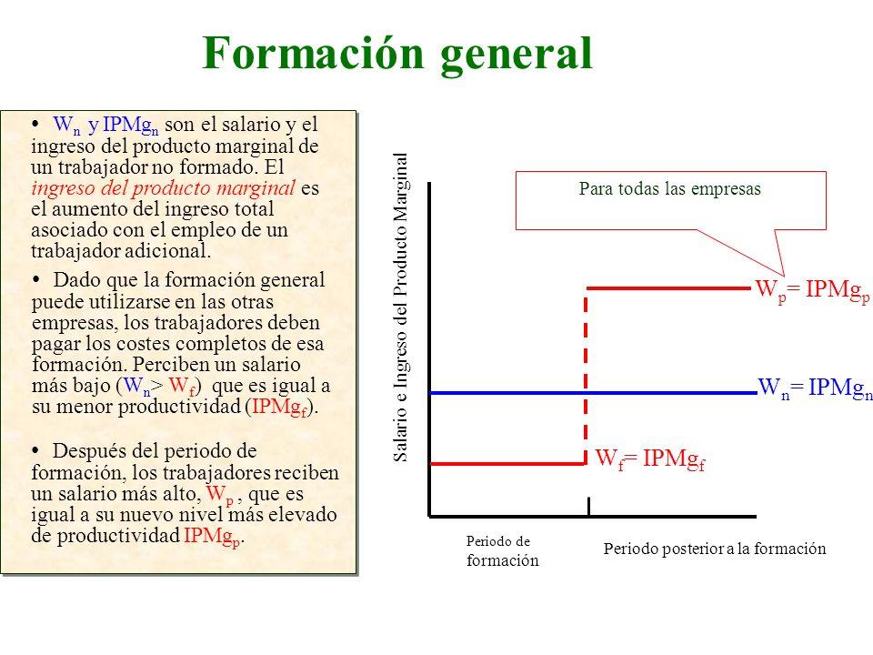 Formación general Salario e Ingreso del Producto Marginal W n y IPMg n son el salario y el ingreso del producto marginal de un trabajador no formado.