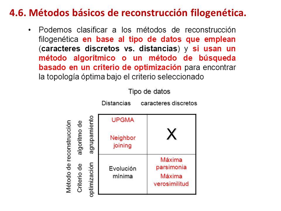 4.6. Métodos básicos de reconstrucción filogenética. Podemos clasificar a los métodos de reconstrucción filogenética en base al tipo de datos que empl