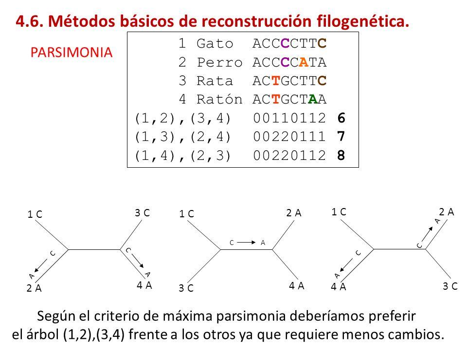 1 Gato ACCCCTTC 2 Perro ACCCCATA 3 Rata ACTGCTTC 4 Ratón ACTGCTAA (1,2),(3,4) 00110112 6 (1,3),(2,4) 00220111 7 (1,4),(2,3) 00220112 8 1 C 2 A 3 C 4 A