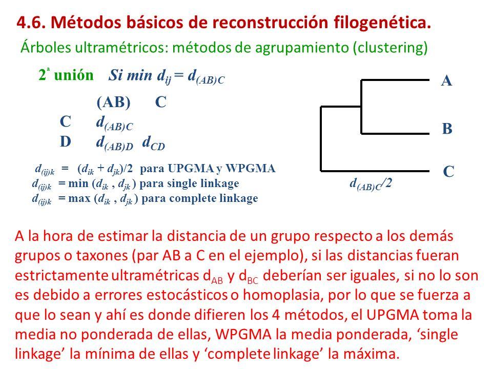 2 ª unión Árboles ultramétricos: métodos de agrupamiento (clustering) (AB) C C d (AB)C D d (AB)D d CD Si min d ij = d (AB)C A B C d (AB)C /2 d (ij)k =
