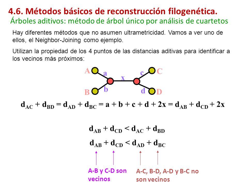 A B C D a b x c d Hay diferentes métodos que no asumen ultrametricidad. Vamos a ver uno de ellos, el Neighbor-Joining como ejemplo. Utilizan la propie