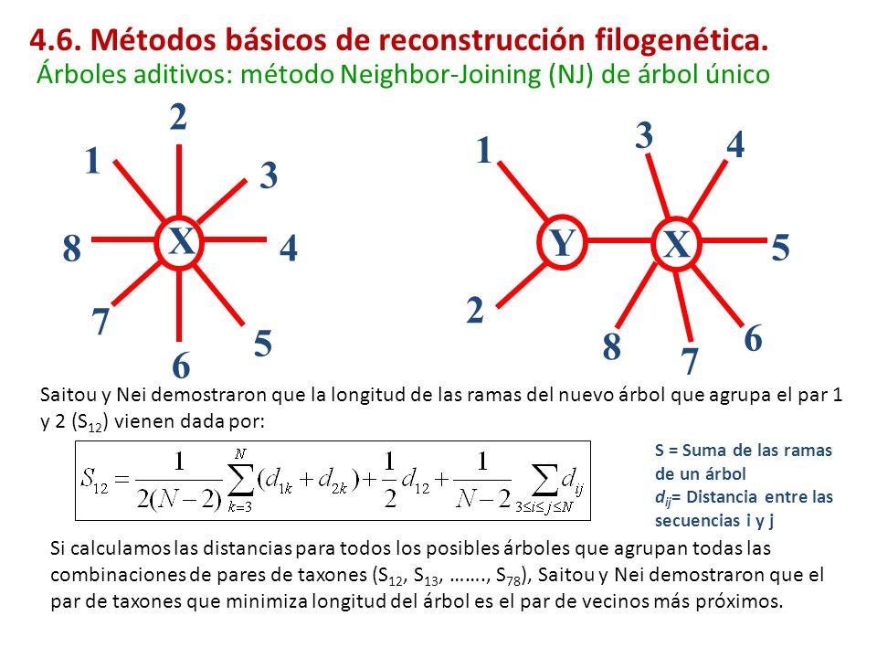 X 1 2 3 4 5 6 7 8 S = Suma de las ramas de un árbol d ij = Distancia entre las secuencias i y j Saitou y Nei demostraron que la longitud de las ramas