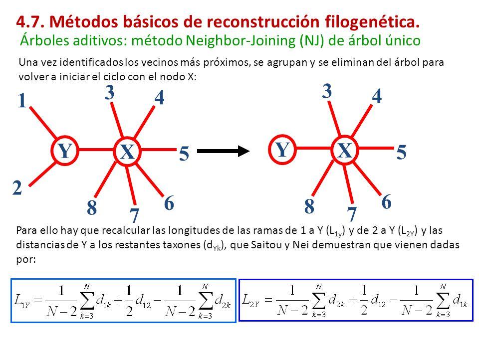 Para ello hay que recalcular las longitudes de las ramas de 1 a Y (L 1y ) y de 2 a Y (L 2Y ) y las distancias de Y a los restantes taxones (d Yk ), qu