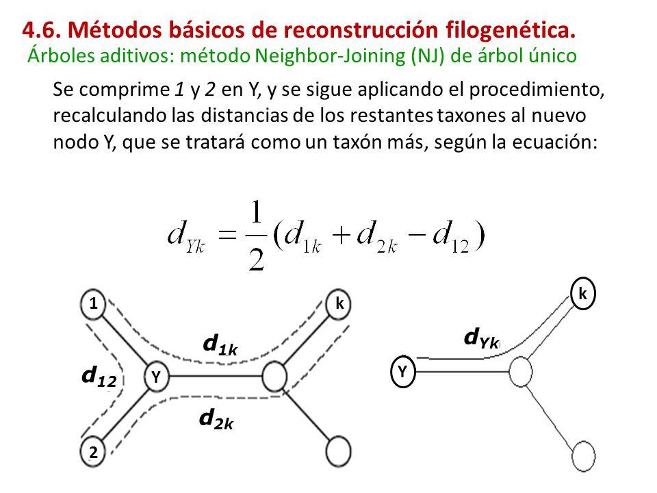 Se comprime 1 y 2 en Y, y se sigue aplicando el procedimiento, recalculando las distancias de los restantes taxones al nuevo nodo Y, que se tratará co