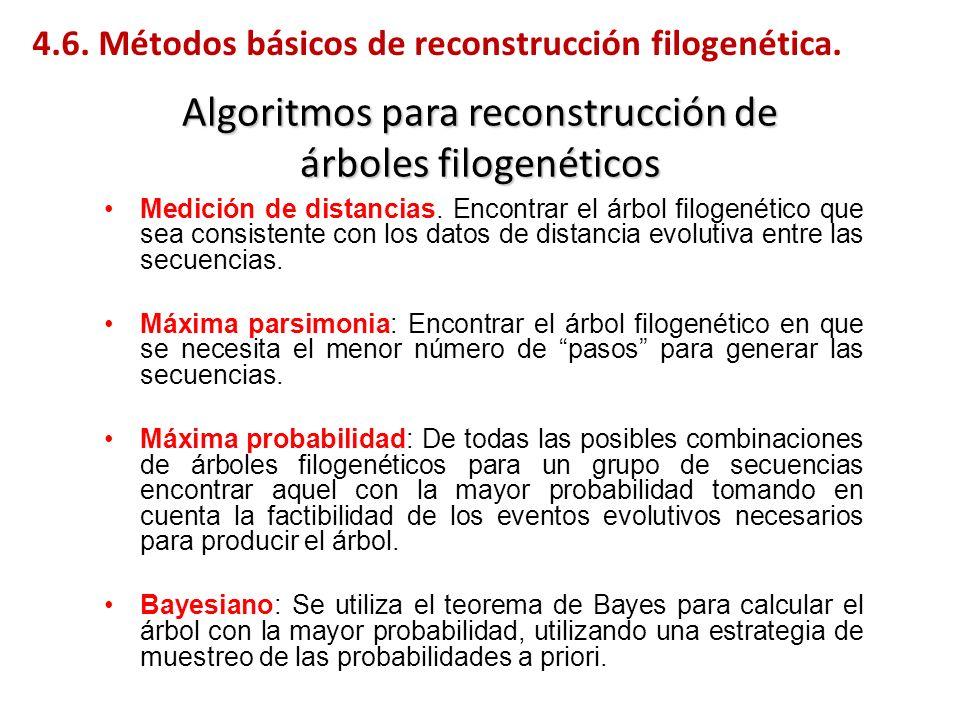 Algoritmos para reconstrucción de árboles filogenéticos Medición de distancias. Encontrar el árbol filogenético que sea consistente con los datos de d