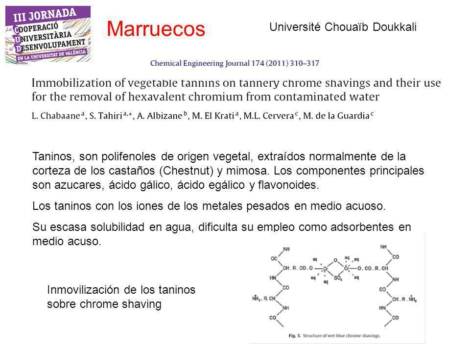 Marruecos Université Chouaïb Doukkali Taninos, son polifenoles de origen vegetal, extraídos normalmente de la corteza de los castaños (Chestnut) y mimosa.