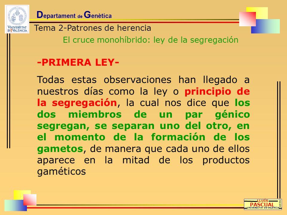 D epartament de G enètica Tema 2-Patrones de herencia El cruce monohíbrido: ley de la segregación LLUÍS PASCUAL UNIVERSITAT DE VALÈNCIA 20032003 -PRIM