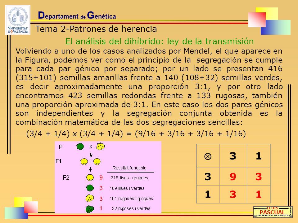 D epartament de G enètica Tema 2-Patrones de herencia El análisis del dihíbrido: ley de la transmisión LLUÍS PASCUAL UNIVERSITAT DE VALÈNCIA 20032003