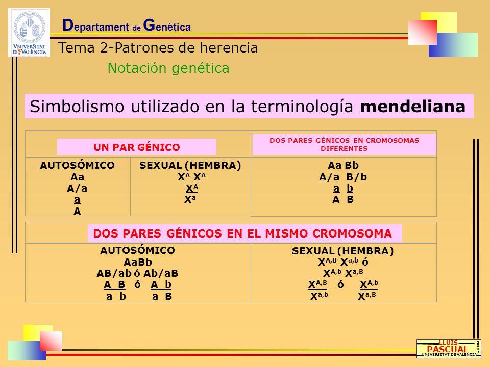 D epartament de G enètica Tema 2-Patrones de herencia Notación genética LLUÍS PASCUAL UNIVERSITAT DE VALÈNCIA 20032003 Simbolismo utilizado en la term