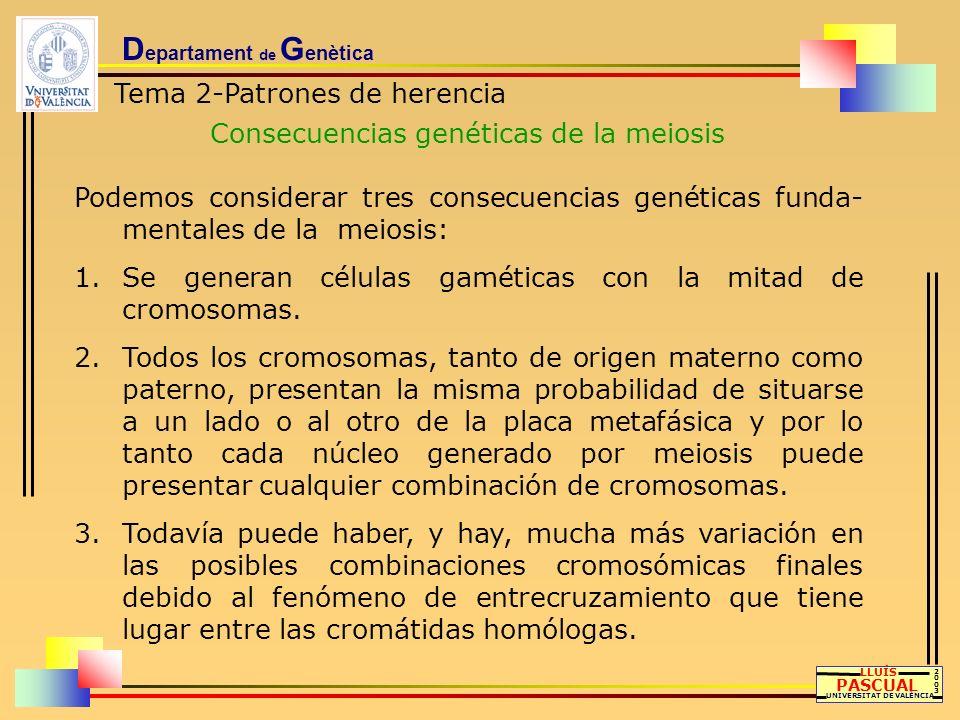 D epartament de G enètica Tema 2-Patrones de herencia Consecuencias genéticas de la meiosis LLUÍS PASCUAL UNIVERSITAT DE VALÈNCIA 20032003 Podemos con