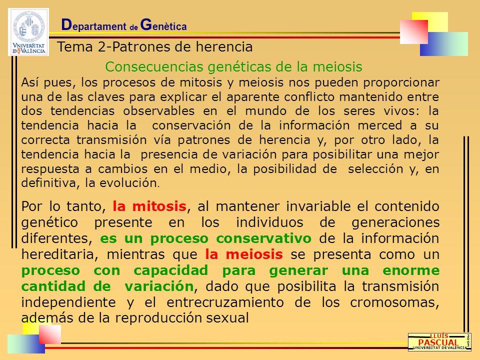 D epartament de G enètica Tema 2-Patrones de herencia Consecuencias genéticas de la meiosis LLUÍS PASCUAL UNIVERSITAT DE VALÈNCIA 20032003 Así pues, l