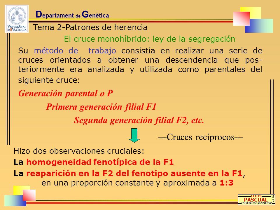 D epartament de G enètica Tema 2-Patrones de herencia El cruce monohíbrido: ley de la segregación LLUÍS PASCUAL UNIVERSITAT DE VALÈNCIA 20032003 Su mé
