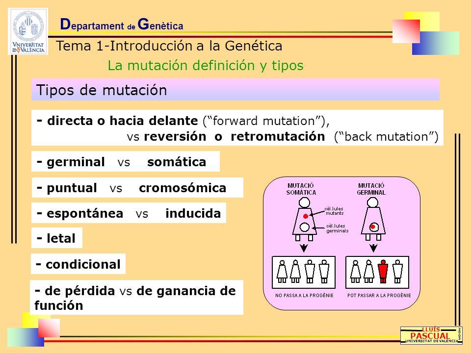 D epartament de G enètica Tema 1-Introducción a la Genética La mutación definición y tipos LLUÍS PASCUAL UNIVERSITAT DE VALÈNCIA 20032003 Tipos de mut
