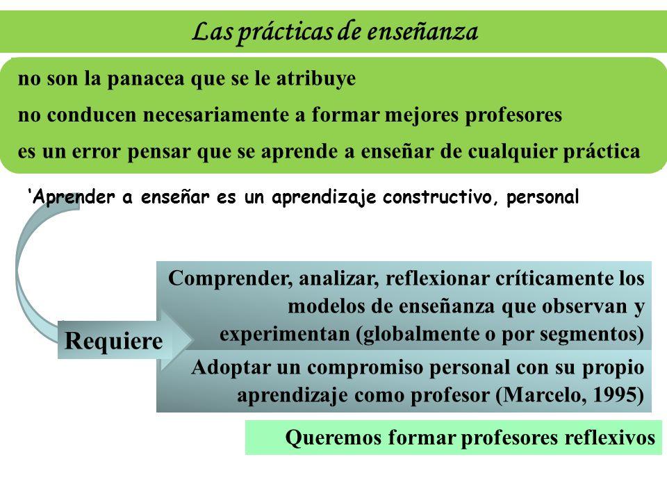 Adoptar un compromiso personal con su propio aprendizaje como profesor (Marcelo, 1995) Comprender, analizar, reflexionar críticamente los modelos de e