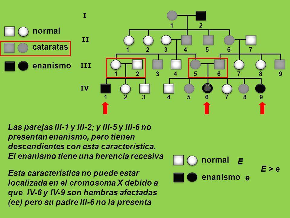 1 2 3 4 5 6 7 8 9 1 2 1 2 3 4 5 6 7 8 9 I II III 1 2 3 4 5 6 7 IV enanismo normal cataratas Las parejas III-1 y III-2; y III-5 y III-6 no presentan en
