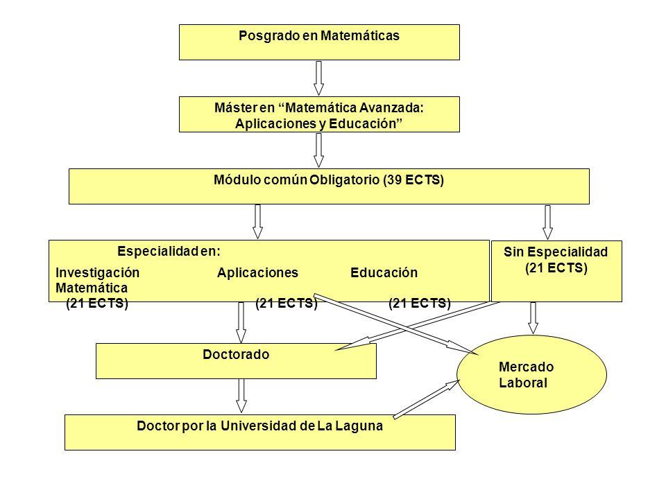 Posgrado en Matemáticas Máster en Matemática Avanzada: Aplicaciones y Educación Módulo común Obligatorio (39 ECTS) Especialidad en: Investigación Apli