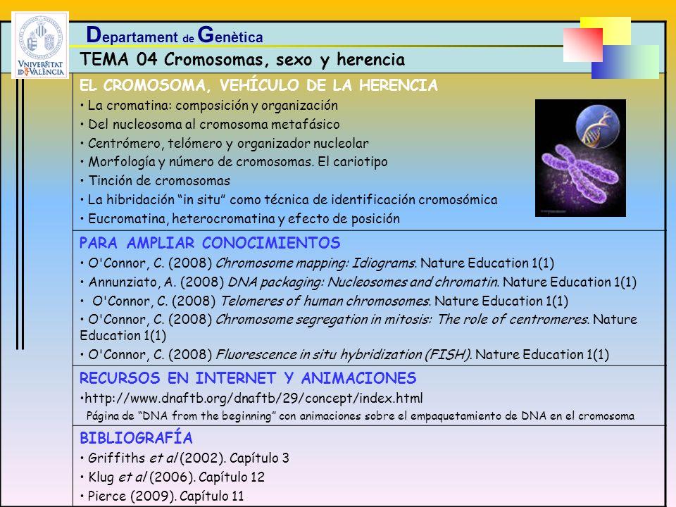 TEMA 04 Cromosomas, sexo y herencia EL CROMOSOMA, VEHÍCULO DE LA HERENCIA La cromatina: composición y organización Del nucleosoma al cromosoma metafás