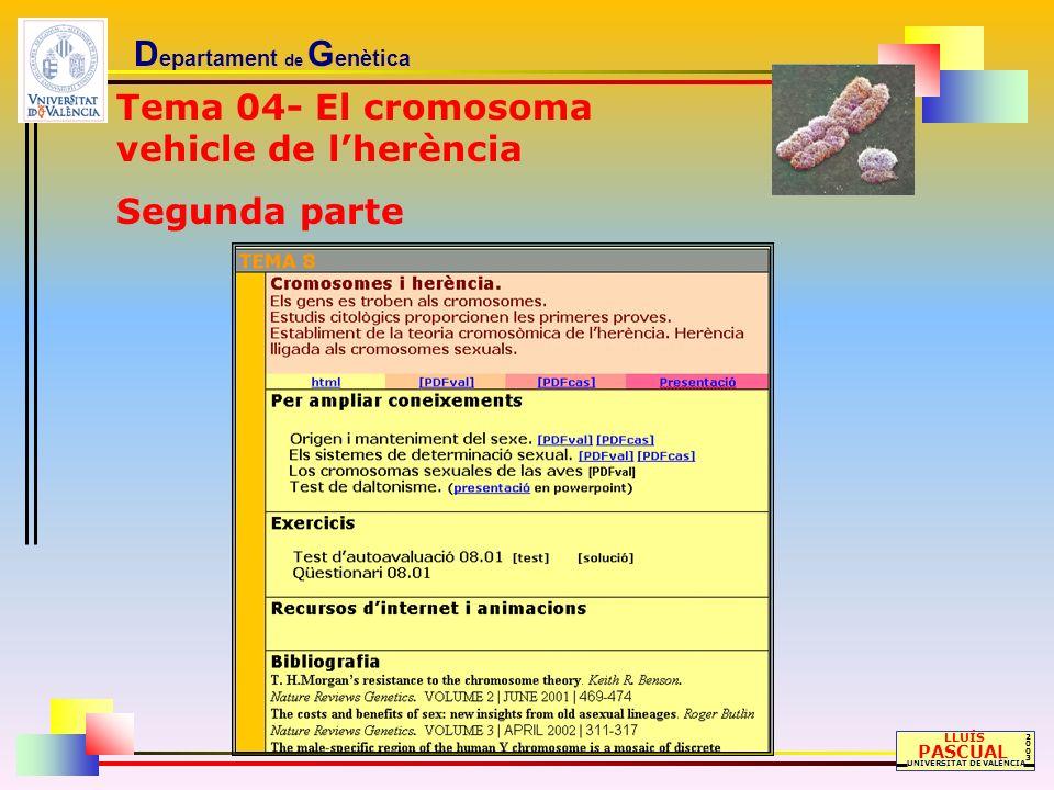 D epartament de G enètica LLUÍS PASCUAL UNIVERSITAT DE VALÈNCIA 20032003 Tema 04- El cromosoma vehicle de lherència Segunda parte