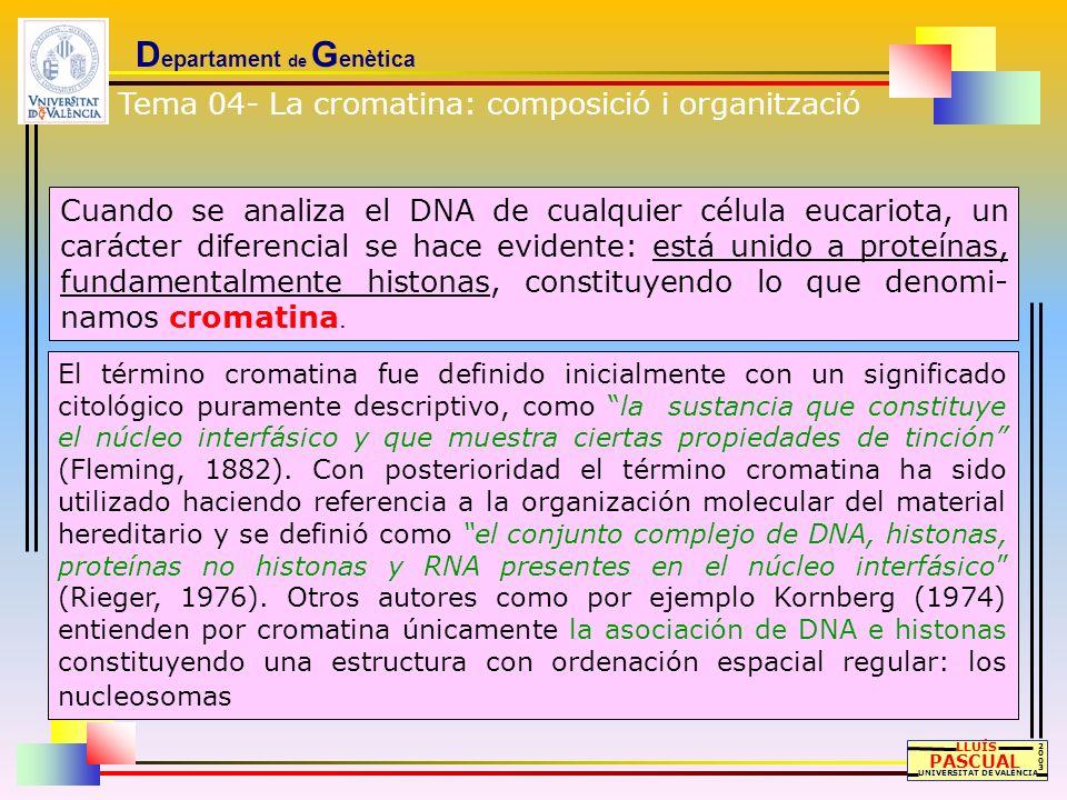 D epartament de G enètica El término heterocromatina fue introducido por Heitz (1928) como resultado de sus estudios de los cromosomas de musgos, diferenciando entre regiones cromosómicas picnóticas, o fuertemente teñidas en la interfase, y regiones que se tiñen menos.