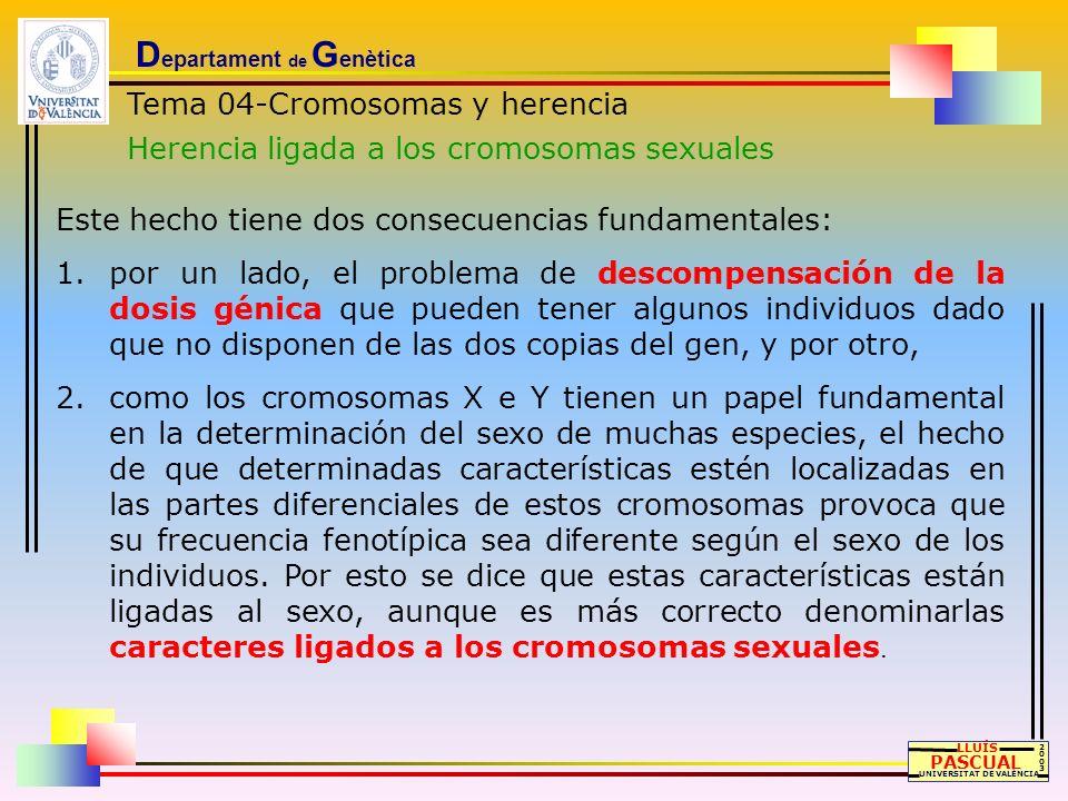 D epartament de G enètica Tema 04-Cromosomas y herencia Herencia ligada a los cromosomas sexuales LLUÍS PASCUAL UNIVERSITAT DE VALÈNCIA 20032003 Este