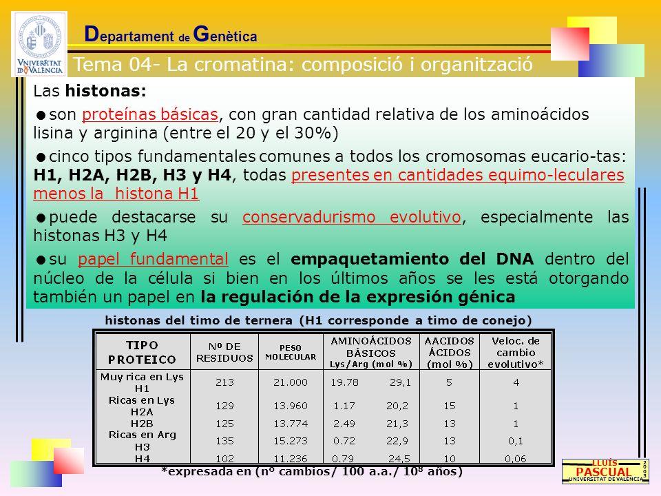Las histonas: son proteínas básicas, con gran cantidad relativa de los aminoácidos lisina y arginina (entre el 20 y el 30%) cinco tipos fundamentales