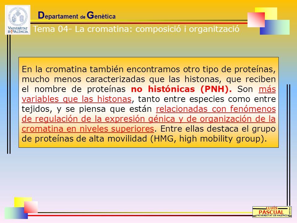 D epartament de G enètica LLUÍS PASCUAL UNIVERSITAT DE VALÈNCIA 20032003 En la cromatina también encontramos otro tipo de proteínas, mucho menos carac