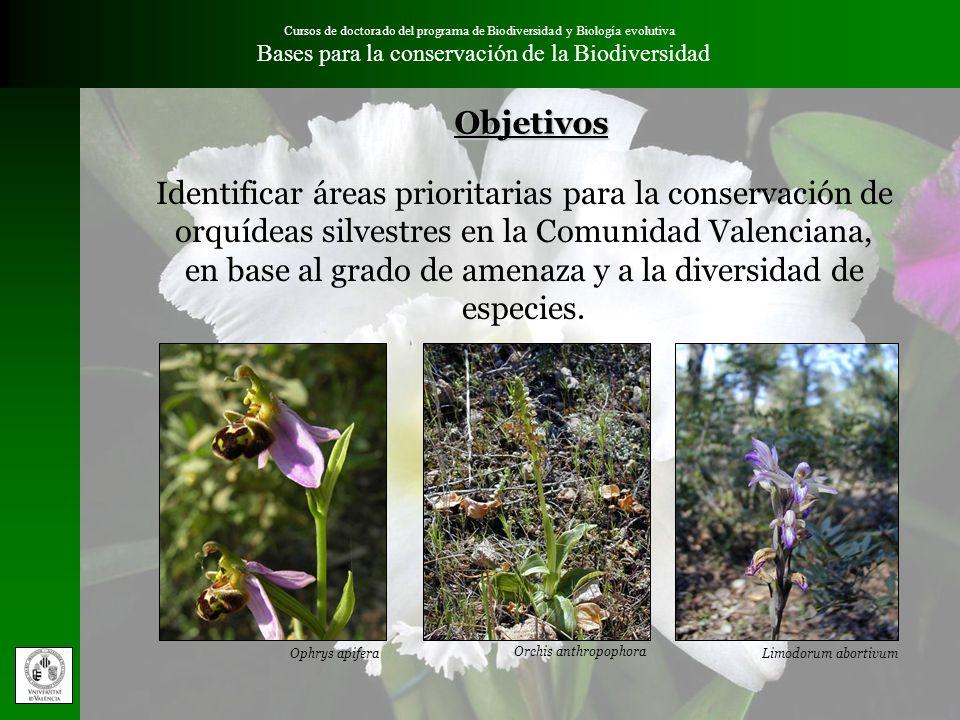 Cursos de doctorado del programa de Biodiversidad y Biología evolutiva Bases para la conservación de la BiodiversidadObjetivos Identificar áreas prior