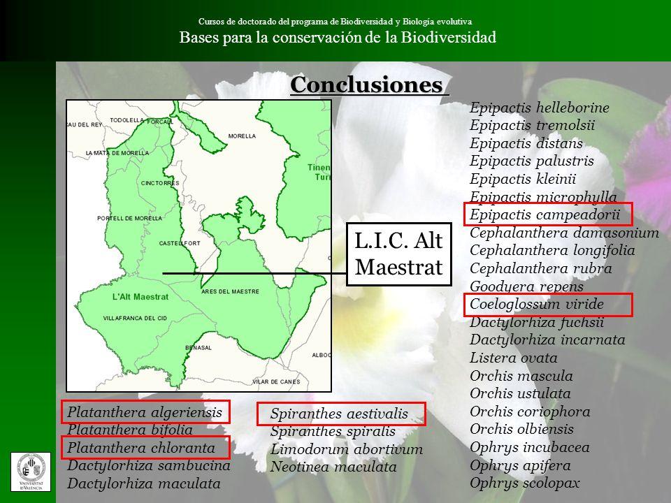 Cursos de doctorado del programa de Biodiversidad y Biología evolutiva Bases para la conservación de la BiodiversidadConclusiones Epipactis helleborin