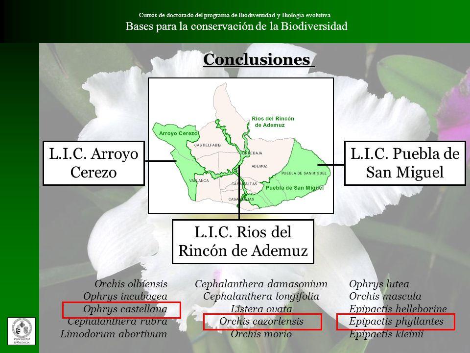 Cursos de doctorado del programa de Biodiversidad y Biología evolutiva Bases para la conservación de la Biodiversidad L.I.C. Arroyo Cerezo Cephalanthe